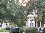 Felder Avenue shows us porch after comfortable porch, all full of Colonial Revival detail.